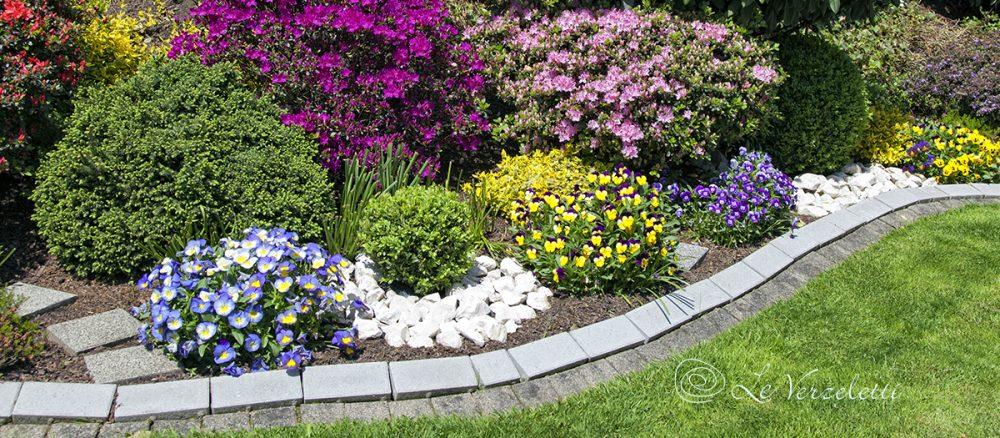 Aiuole fiorite in estate da dove partire e come gestirle for Piante per aiuole da giardino
